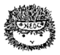 New England Orienteering Club (NEOC) logo